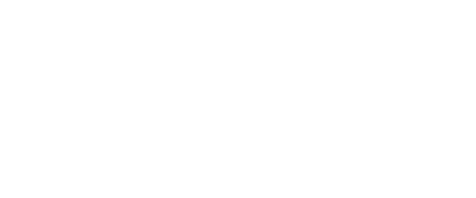 Brilliant Sole Logo